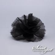 Cloud Circle - Black