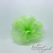Cloud Circle - Apple Green