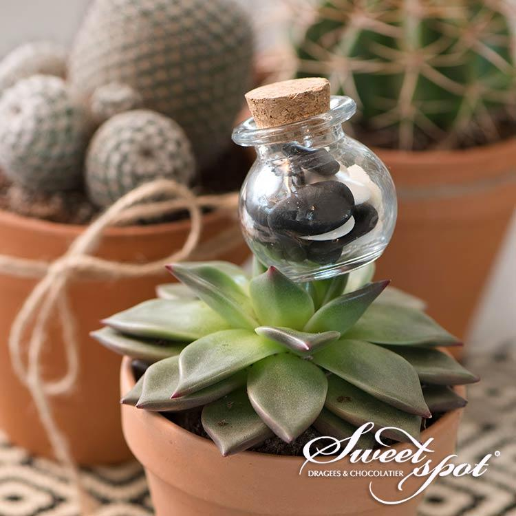 Mini Round Jar Cork Cap
