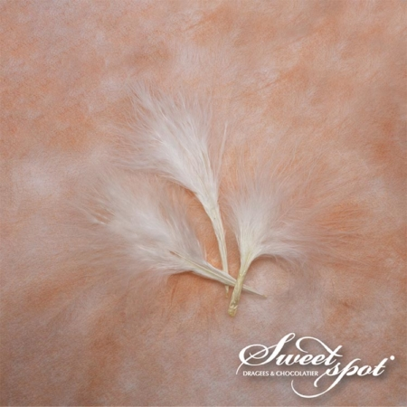 Feathers - White